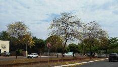 Defesa Civil emite alerta de umidade baixa em Paranaíba