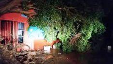 Vendaval no início da noite provoca estragos em bairros de Três Lagoas
