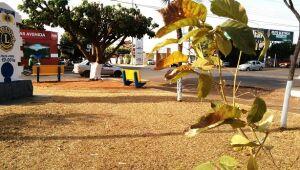 Paranaibenses sofrem com tempo seco, estiagem e poeira