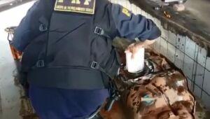 Três são presos com 20 kg de cocaína em rodovia próximo a Três Lagoas