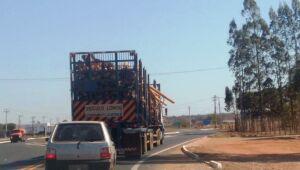 Internauta flagra carreta de eucalipto com toras caídas em rodovia de Três Lagoas