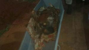 Idosa enterrada em quintal de casa era maltratada pela filha, diz MP