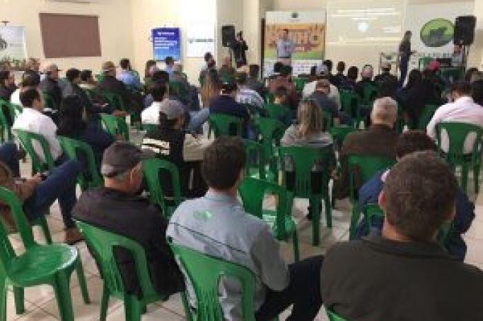 Produtividade da soja deve aumentar em Mato Grosso do Sul nos próximos anos