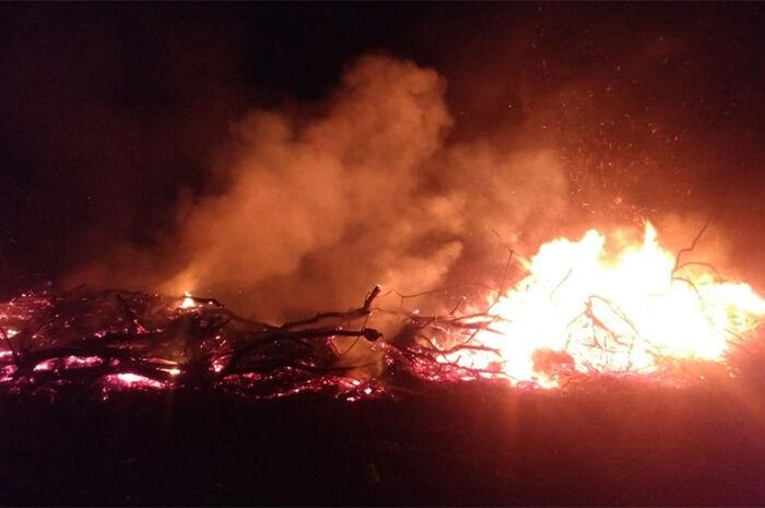 Homem é flagrado incendiando vegetação nativa de desmatamento ilegal