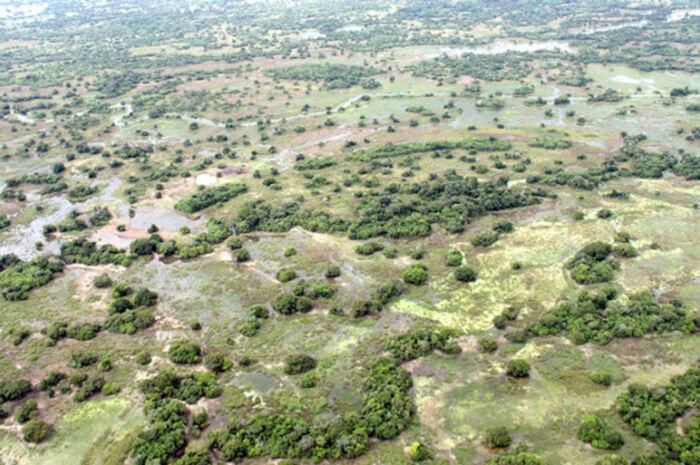 Inscrição para seminário sobre recuperação de áreas degradadas do Taquari encerra amanhã