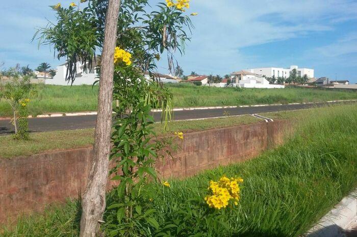 Semana começa quente e será de calorão em Paranaíba