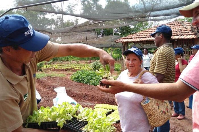 Agricultores discutem produção orgânica de alimentos