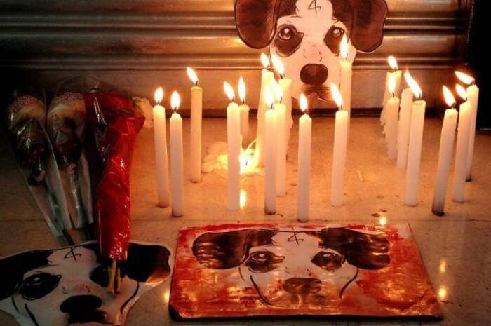 Carrefour lança nova nota e diz quais medidas irá tomar após caso de cão