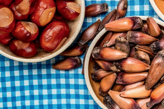 Castanha portuguesa ou pinhão: qual é mais saudável?