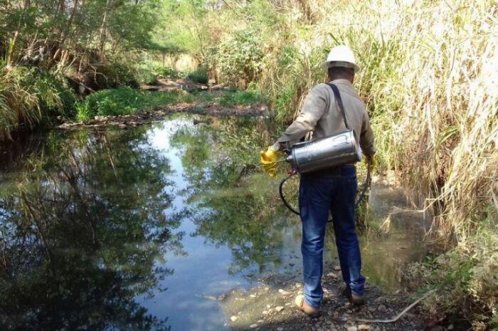 Casos de dengue têm queda de 85% em Três Lagoas