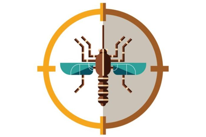 Como tratar o zika?