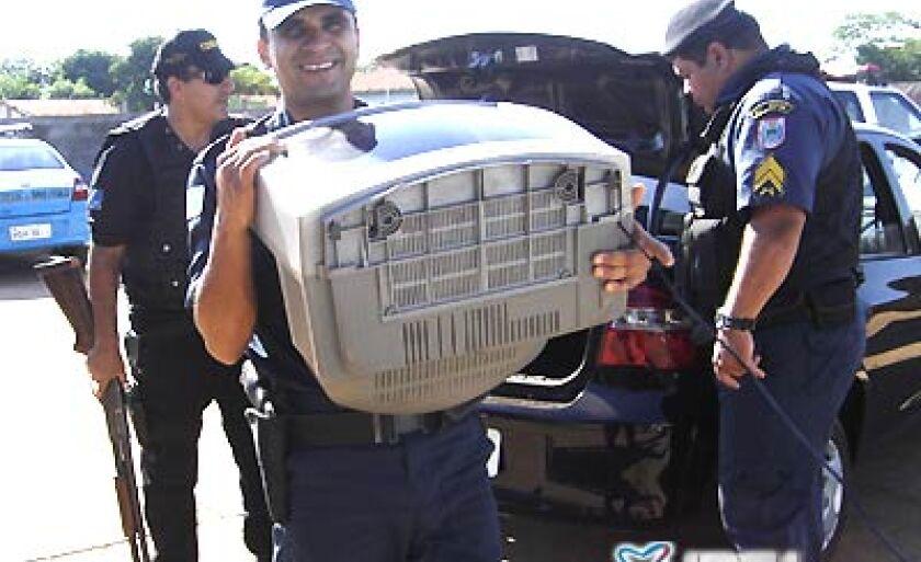 Na operação foram apreendidos eletrodomésticos, bicicletas, arma de fogo, drogas e um rádio HT