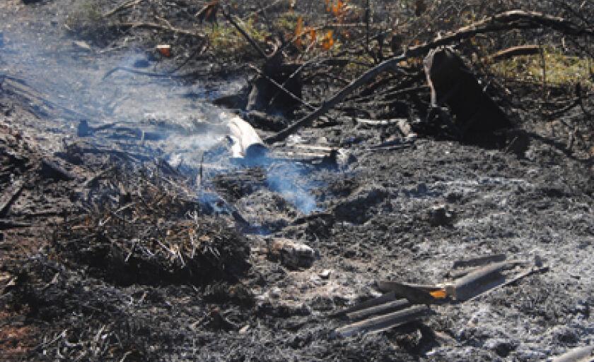 Terreno foi tomado pelo fogo na tarde de ontem