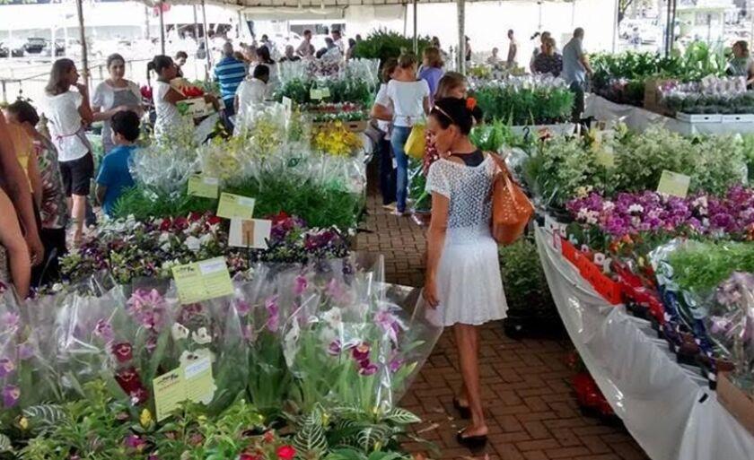 Apae realiza a 9ª Expo Flor em Três Lagoas