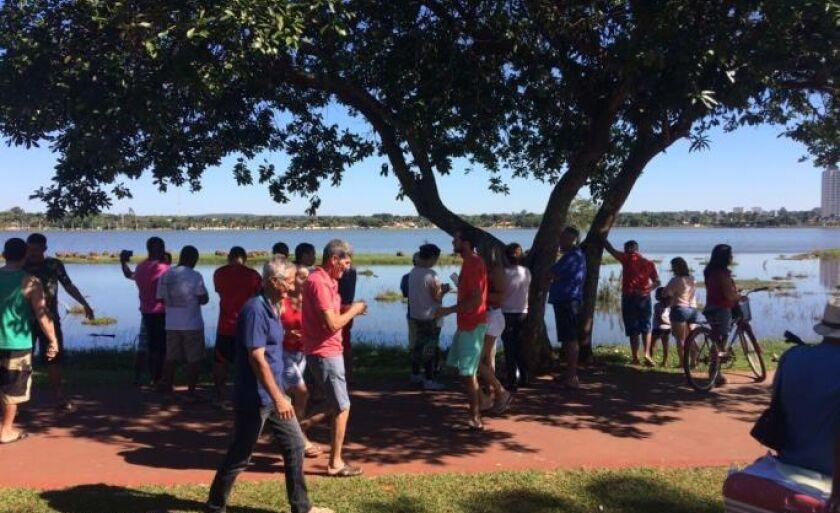 Grupo de turistas visitou a Lagoa Maior, na manhã desta segunda-feira (19), e o que chamou a atenção de todos foram as capivaras.