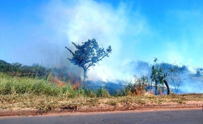 Incêndio em um terreno na rua Egídio Thomé, no bairro Interlagos, em Três Lagoas, causou transtorno a moradores na tarde deste sábado