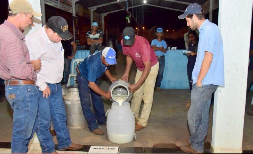 Na categoria Vaca os animais vencedores foram: 1º lugar de propriedade de Waldir Junqueira de Andrade, animal Caraca Lins com 60.696Kg por ordenha, premiação R$1.800
