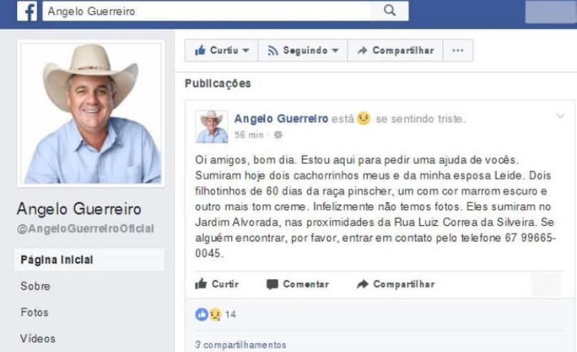 Apelo para encontrar pelos filhotes foi feito na página oficial do Facebook do prefeito de Três Lagoas, Ângelo Guerreiro
