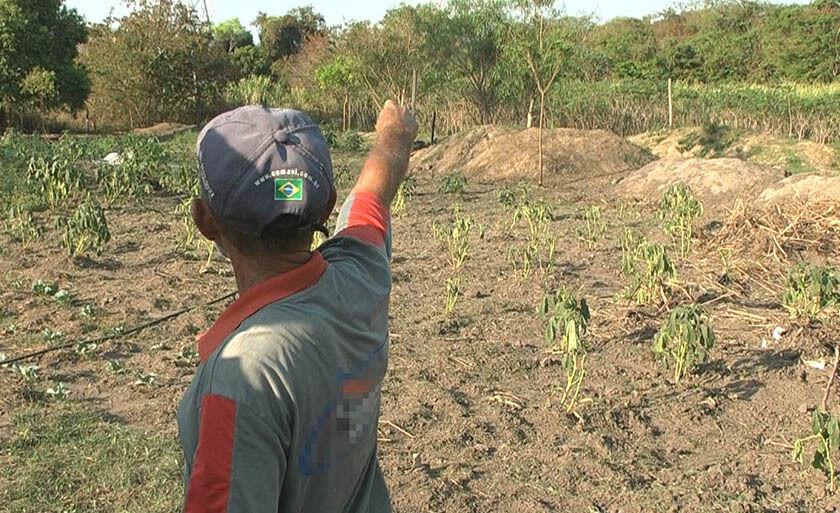 Agricultor mostra áera que deverá ser invadida por obra de anel viário