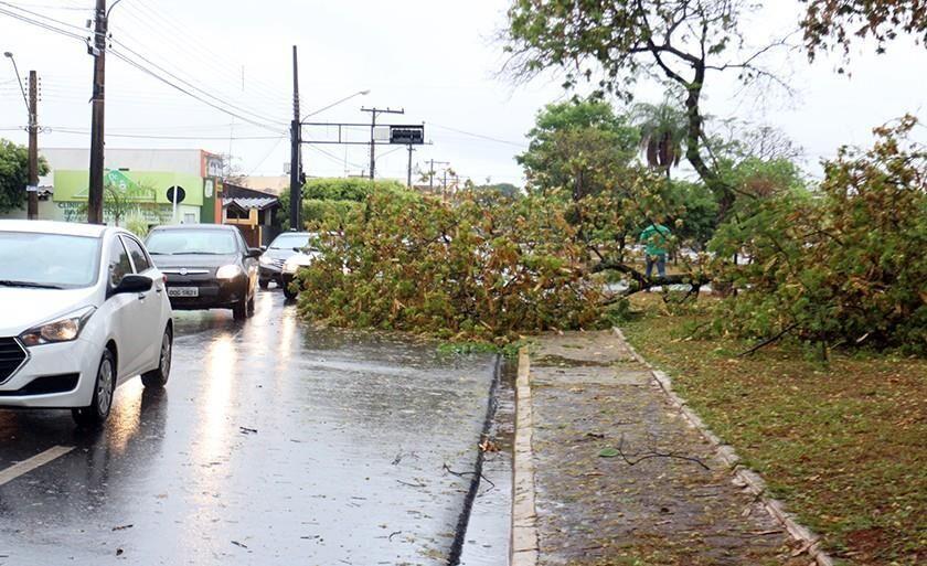 Rua Egídio Thomé, cheia de buracos e alagada, dificulta vida de motoristas