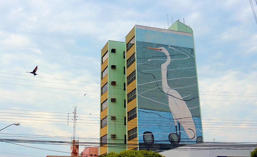 Garça branca estampa prédio comercial na área central de Três Lagoas
