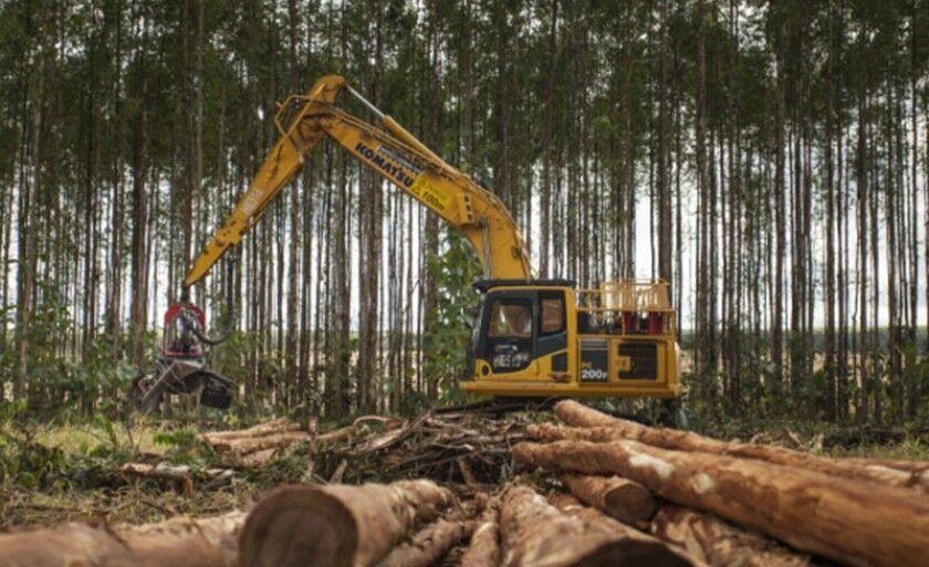 Vinte vagas estão disponíveis para o cargo de operador de máquina florestal