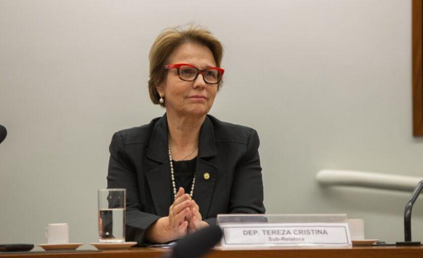 Deputada Tereza Cristina foi a que menos faltou às sessões entre deputados de MS