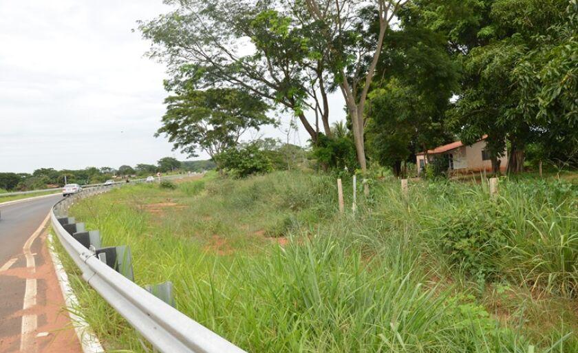 Empresário quer uma área de 18.5 hectares no Cinturão Verde para instalar fábrica de cerveja
