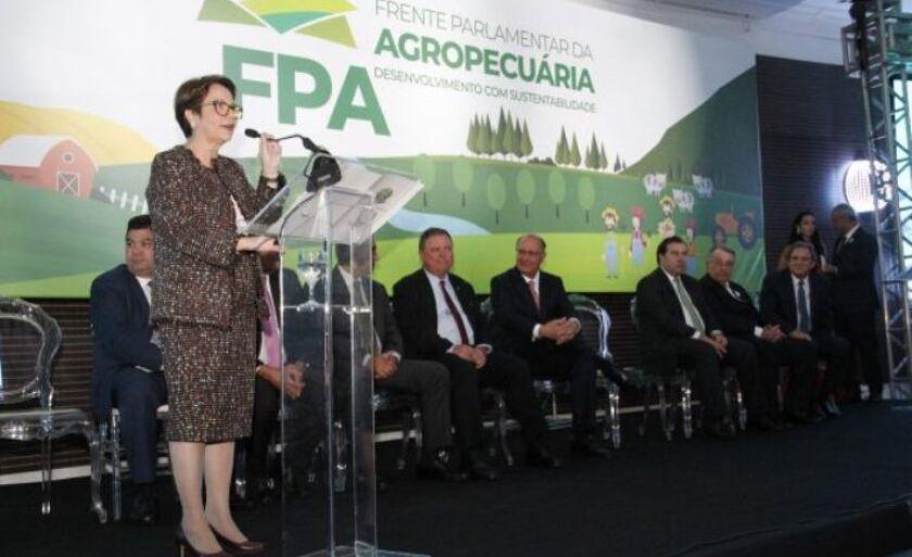Deputada vai trabalhar por prorrogação de prazo de adesão ao PRR
