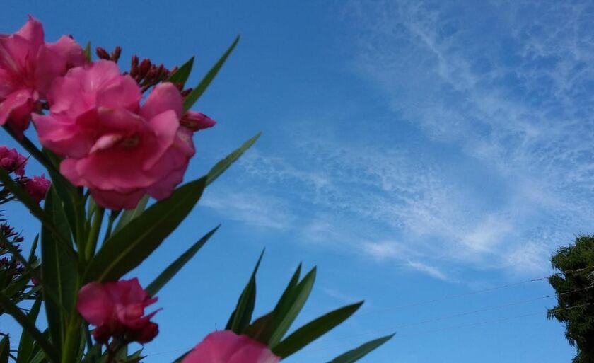 Em Paranaíba a quarta-feira amanheceu com céu aberto com algumas nuvens