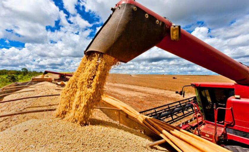 Conab revisou produção de grãos para 229,7 milhões de toneladas