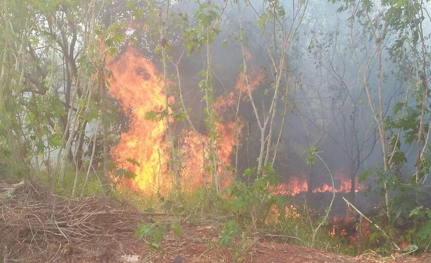 Paranaíba já registra mais de 65 casos de queimadas desde o início do ano
