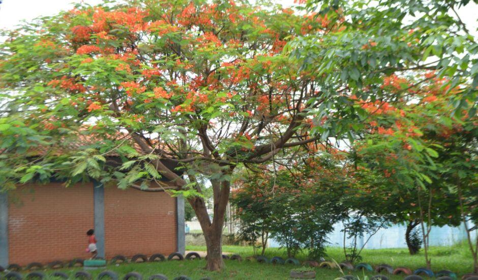 A quarta-feira em Paranaíba amanheceu com muitas nuvens em Paranaíba
