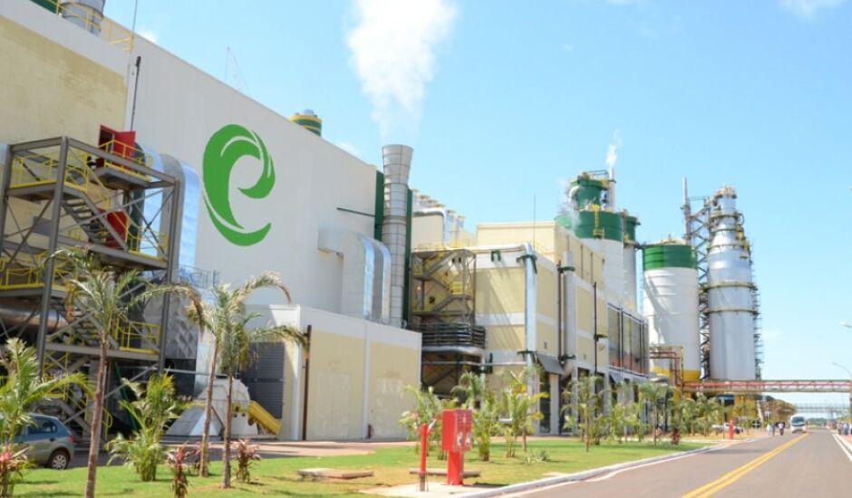 Usina de energia à base de cavaco de madeira será instalada em Três Lagoas