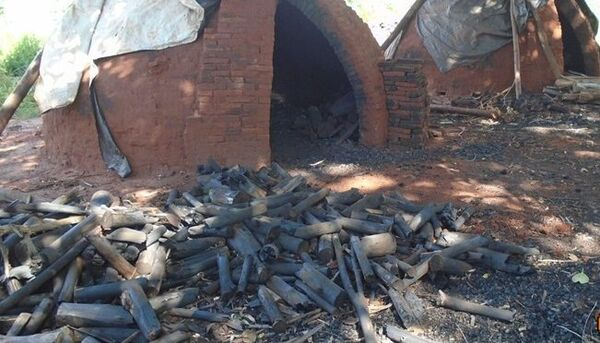O proprietário não possuía licença ambiental da carvoaria e a atividade foi interditada, 30 m³ de carvão foram apreendidos